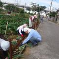 農作業知識を生かしたボランティア活動の写真