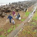 東総学園 学生自治会による銚子市黒生町地先海岸清掃ボランティアの写真
